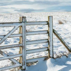 Landschaftsbild mit schneebedecktem Tor eines Weidezauns im Vordergrund.