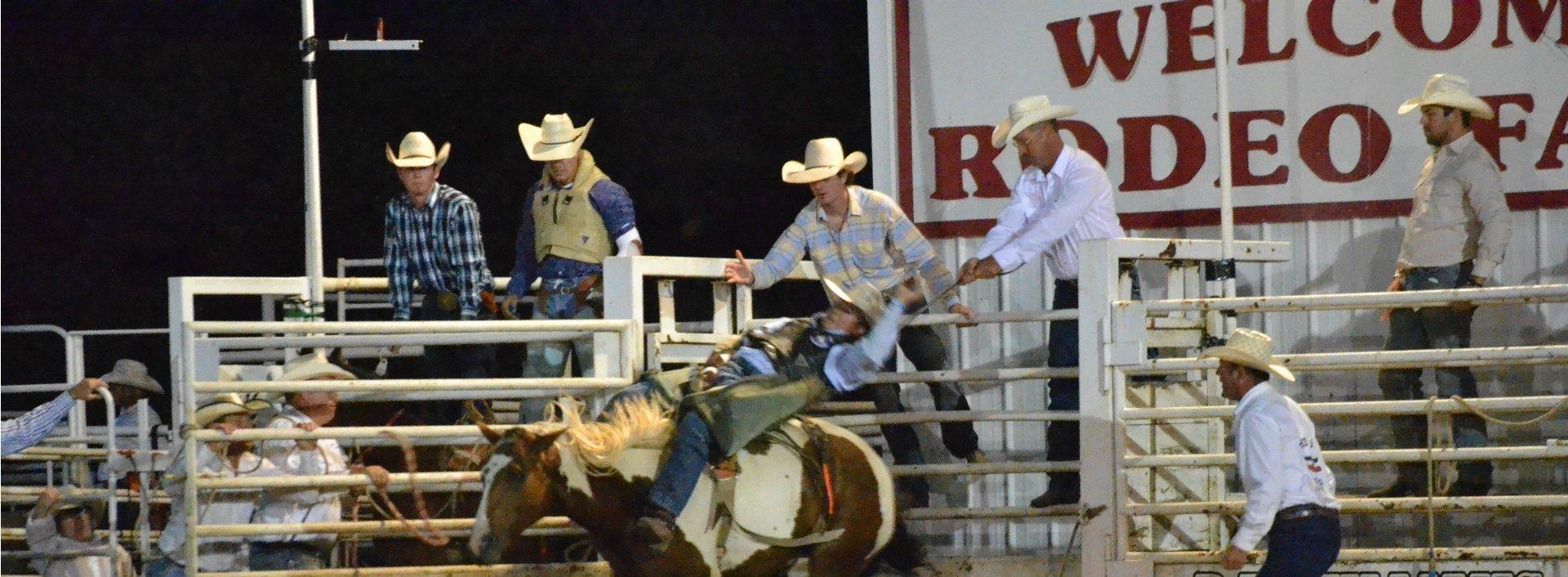 Männer beim Rodeo tragen den ten-gallon cowboy hat, spanische Lehnwörter begründen die englische Bezeichnung.