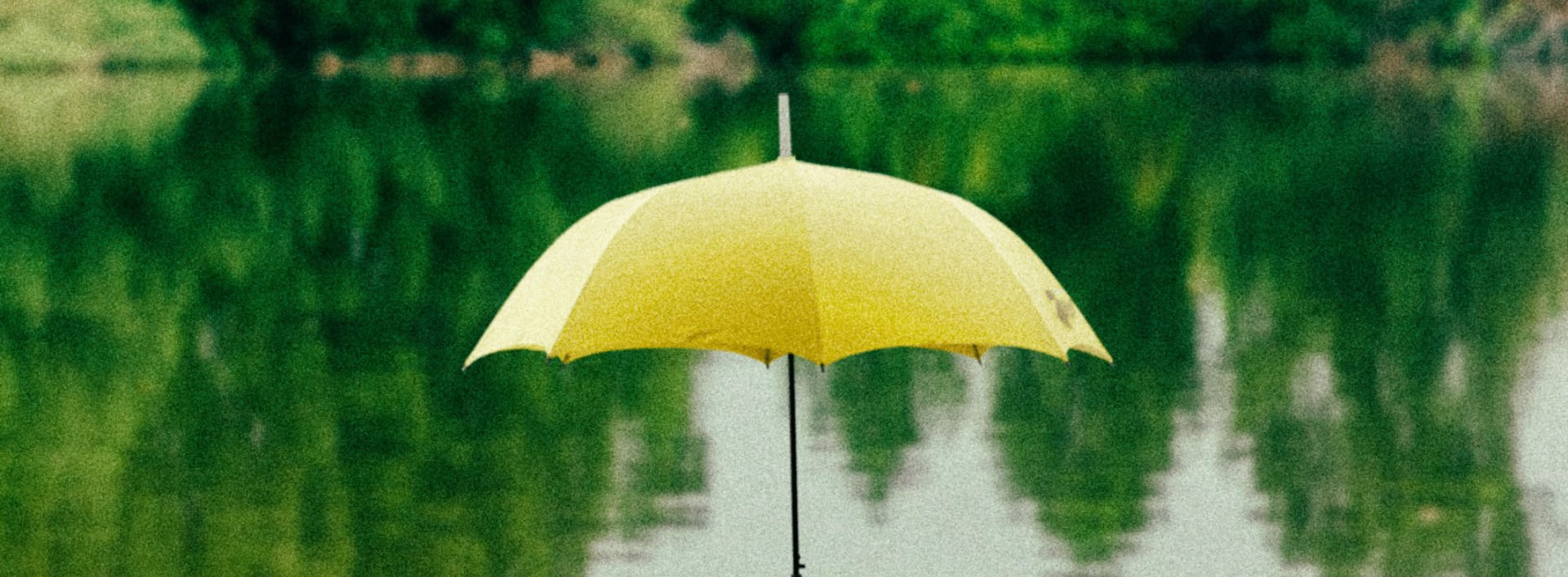 A or an yellow umbrella in a green lake.