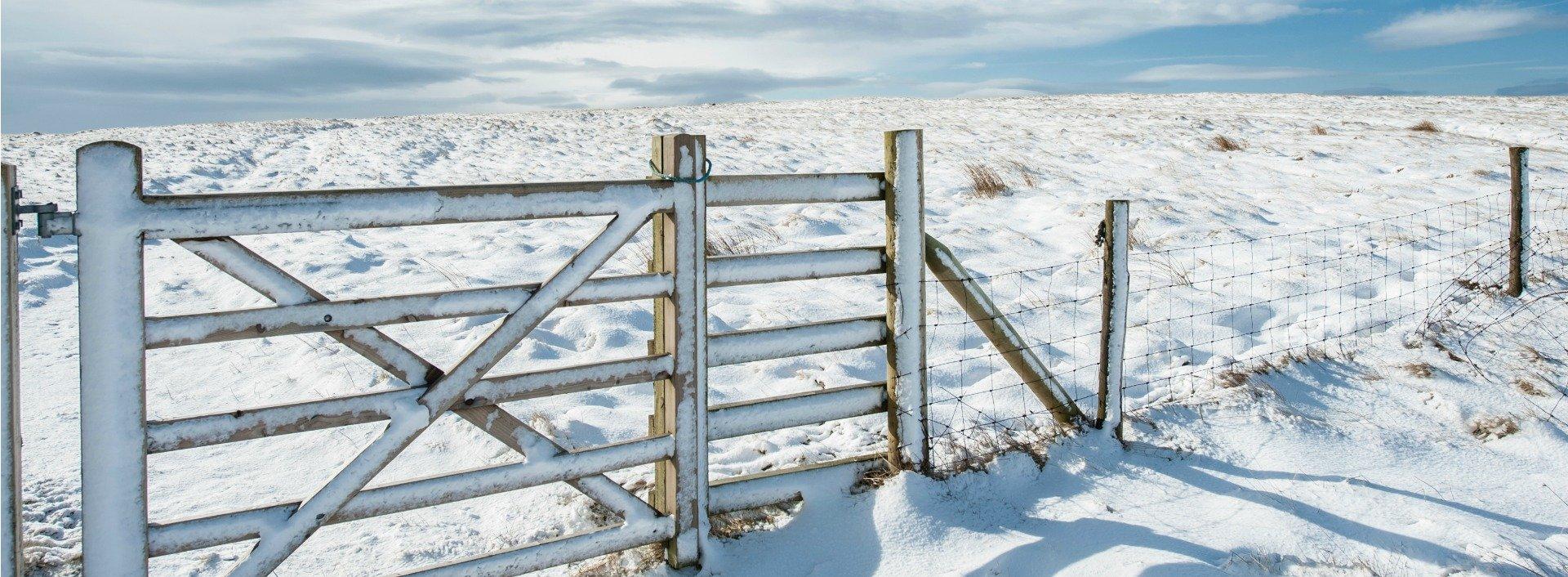 Landschaftsbild mit schneebedecktem Tor eines Weidezauns im Vordergrund