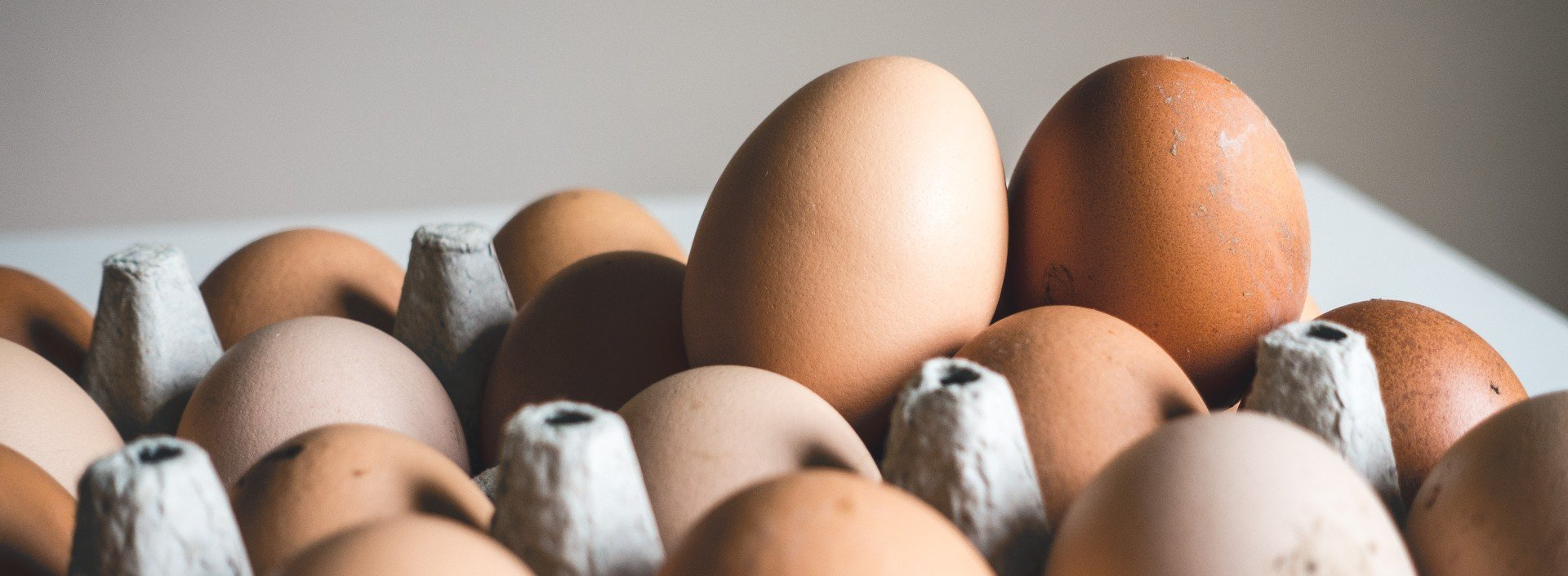 Brown eggs sit in a carton against a plain background. There are many ways to eat eggs!